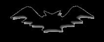 BATS THEATRE COMPANY INC